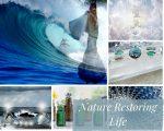 Nature Restoring Life