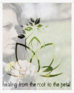 Dandelion Healing